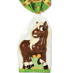 poney-en-chocolat